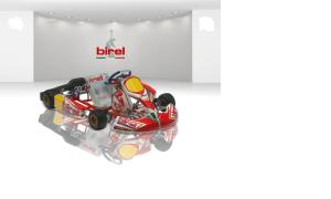 Atlanta's #1 Source for Birel Karts