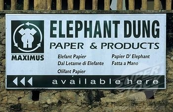 eco-friendly papers-elephant dung paper