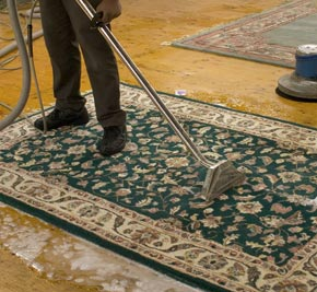 Area Rug Cleaning: Our Gentle Methods Lift Away Spots And Remove Ground In  Dirt From Your Area Rugu0027s Delicate Fibers.