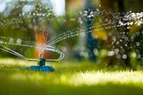 Lawn Sprinkler