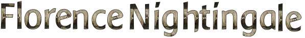 Florence Nightingale display banner