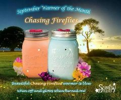 Chasing Fireflies Scentsy Warmer image