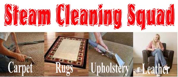 Steam Cleaning Squad Holiday Specials