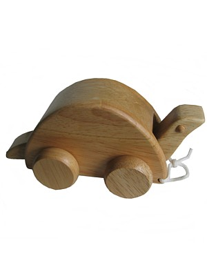 Eco- friendly  toys, pull along turtle