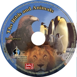 The Bible and Animals