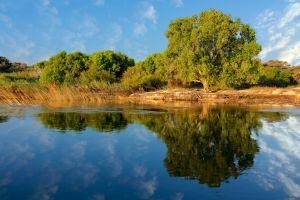 The Zambezi