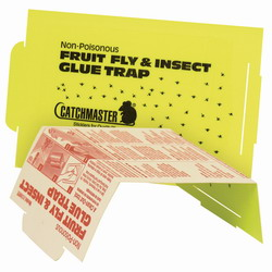 catchmaster fruit fly trap