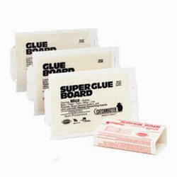 catchmaster super glue board