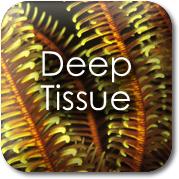 Tochstone Massage: Deep Tissue