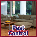 Alternative Pest Control - Pest Control