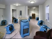 carpet cleaning companies Buford, carpet cleaning companies Alpharetta