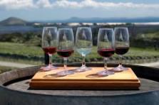 I Love NZ Wine