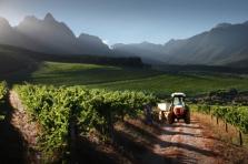 Stonecroft Winery