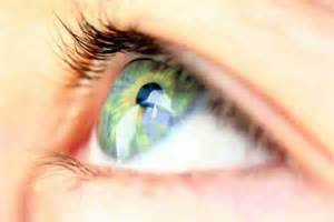 Vision USA Service