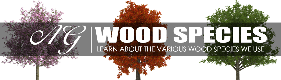 LEARN ABOUT WOOD SPECIES