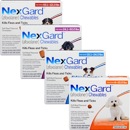 Nexgard for Dogs and Cats