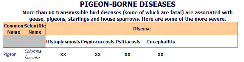 Additional Pigeon Related Diseases