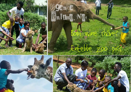 Bobi Wine shares Entebbe Zoo pics