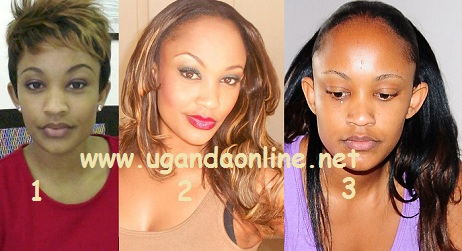 Zari with short hair in (1) compared with (2) long hair and in (3) was on the day of her introduction ceremony