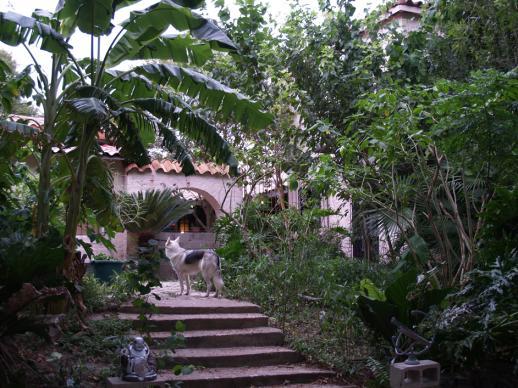 Bayview Stargate