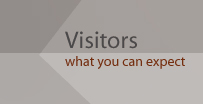 Visitors - what you can expect