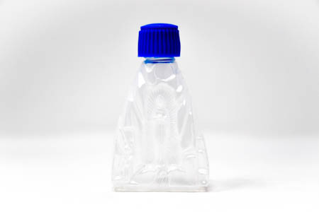 Plastic Lourdes  Water Bottle.