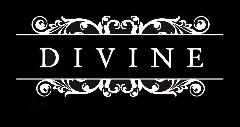 DiVine Ladies Ministry