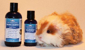 Organic Shampoo & Pre Shampoo